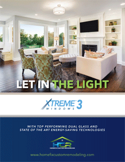 XtremeWindow3webCover